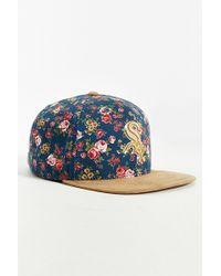 American Needle Off The Vine Chicago White Sox Hat - Multicolour
