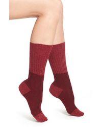 Pantherella | 'chloe' Cable Knit Socks - Burgundy | Lyst