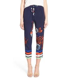 Plenty by Tracy Reese Graphic Jogger Pants - Multicolour