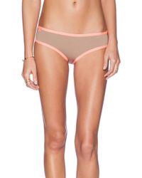 Maaji Fancy Mustang Bikini Bottom - Lyst