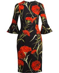 Dolce & Gabbana Carnation-Print Cotton Dress black - Lyst