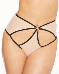 Curvy Kate - Knockout Brief - Lyst