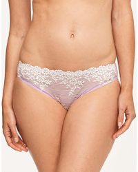 Wacoal - Embrace Lace Bikini Brief - Lyst