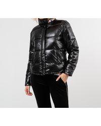 Champion Jacket Black - Noir