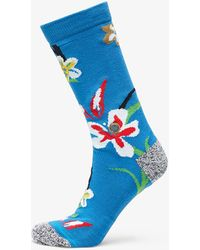 Stance Our Roots Socks Blue - Blau