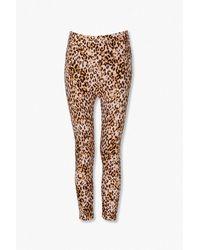 Forever 21 Leopard Print Skinny Pants - Brown