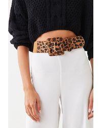 Forever 21 Leopard Print Waist Belt , Black/brown