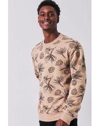 Forever 21 Pine Cone Print Sweatshirt - Brown