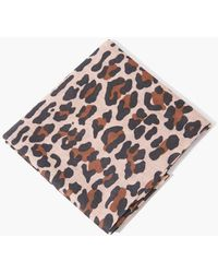 Forever 21 Leopard Print Scarf - Brown