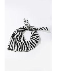 Forever 21 Zebra Print Scarf , Black/white