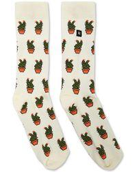 Forever 21 - Men Richer Poorer Cacti Print Crew Socks - Lyst