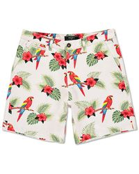 Forever 21 - Tropical Parrot Print Shorts - Lyst