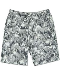 Forever 21 - Zebra Palm Print Swim Trunks - Lyst