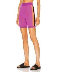 Nagnata Triad Bodhi Biker Short - Purple
