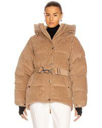 CORDOVA Mammoth Jacket - Brown