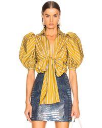 Silvia Tcherassi Primula Blouse - Yellow