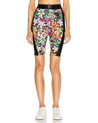 Dundas For Fwrd Biker Shorts - Multicolor