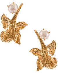Christie Nicolaides Earrings - Metallic