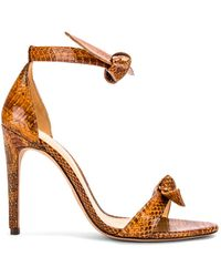 Alexandre Birman Clarita Ankle Strap Sandals - Mehrfarbig