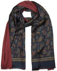 FORZIERI Modal & Silk Paisley Print Men's Fringed Scarf - Azul