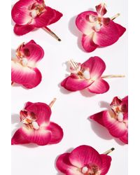 Free People Wild Orchid Pins By Gen3 - Pink
