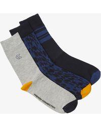 French Connection Oak Socks 3 Pack - Blue