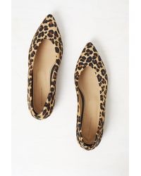 French Connection Naya Pointed Leopard Print Flats - Multicolour