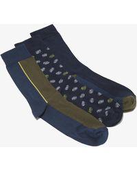 French Connection Harrogate Socks 3 Pack - Blue