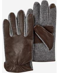 Polo Ralph Lauren Gants tactiles en cuir et laine - Marron