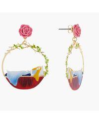 N2 Créoles Tiges Belle Endormie Et Rose - Multicolore