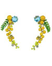 Les Nereides Boucles D'oreilles Clip Branche De Mimosa Et Fougère - Multicolore