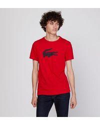 Lacoste T-shirt droit en jersey - Ligne Sport - Rouge
