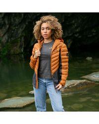 Gandys Burnt Orange Helsinki Hybrid Softshell Padded Jacket