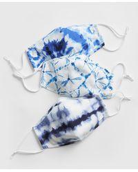 Gap Adult Contour Mask With Filter Pocket (3-pack) - Blue