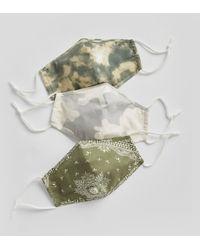 Gap Adult Contour Mask With Filter Pocket (3-pack) - Green