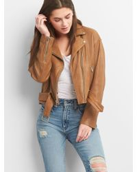 Gap Belted Moto Jacket In Leather - Brown