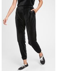Gap Velvet Sweatpants - Black