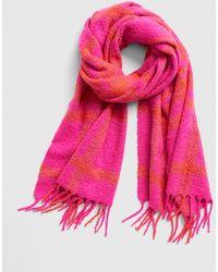 Gap Cozy Boucle Fringe Scarf - Pink