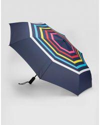 Gap Crazy Stripe Umbrella - Blue