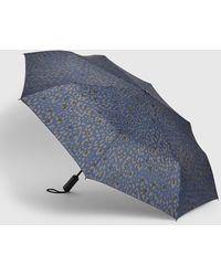 Gap Classic Print Umbrella - Blue