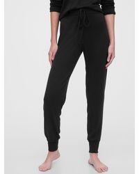 Gap Softspun Sweatpants - Black