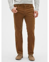 GAP Factory Straight Fit Cords With Gapflex - Brown