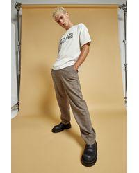 Garage Unisex Straight Leg Dress Pant - Brown