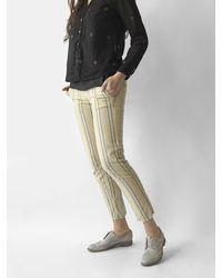 B'Sbee Oxford Pant - Multicolor