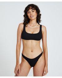 Insight Tyra Scoop Crop Bikini Black