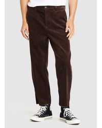 Insight Cannon Cord Pant - Brown