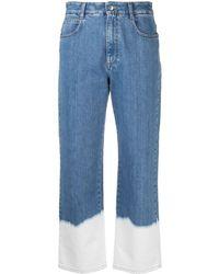 Stella McCartney Jeans Clear Blue