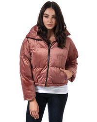 Brave Soul Velvet Cropped Padded Jacket - Pink