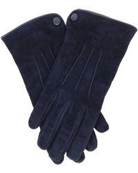 Eleventy Gloves - Blue