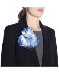 Maliparmi Brooches Women - Blue